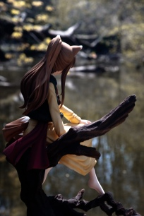 horo-a-rest-in-the-forest-ver-by-global-49