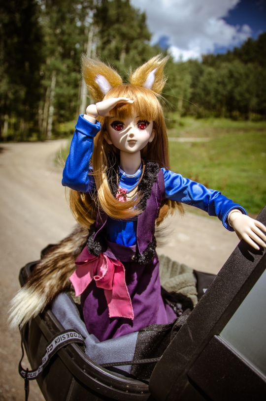 dollfie-horo-in-colorado-24