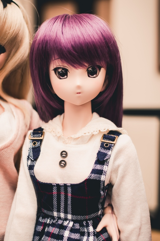 toronto-doll-meet-15-1-first-meet-of-the-year-04